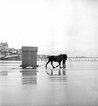 Horse pulling a bathing hut on a norman beach. © Roger-Viollet