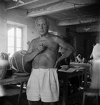 Pablo Picasso (1881-1973), Spanish painter and sculptor, in his studio. Vallauris (France). © Boris Lipnitzki/Studio Lipnitzki/Roger-Viollet