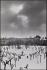 La place des Vosges sous la neige. Paris (IVème arr.), 1970. Photographie de Léon Claude Vénézia (1941-2013). © Léon Claude Vénézia/Roger-Viollet