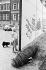 Chute du mur de Berlin. Début de la démolition systématique du mur. Une riveraine observant le travail de démolition dans la Seydlitzstrasse (Mitte). Allemagne, 13 juillet 1990. © Ullstein Bild / Roger-Viollet