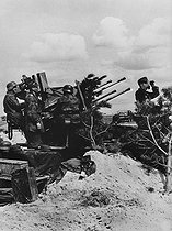 World War II. Front of Normandy, July 1944. German anti-aircraft defence. © LAPI/Roger-Viollet