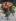 """Auguste Renoir (1841-1919). """"Roses mousseuses"""". Huile sur toile, vers 1890. Paris, musée d'Orsay. © Imagno / Roger-Viollet"""