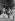 Guerre 1939-1945 - Libération de Paris, secouristes emportant une femme blessée pendant la fusillade de Notre-Dame de Paris, le 26 août 1944. © LAPI / Roger-Viollet