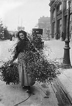 Woman selling some mistletoe. Paris, December 1923. © Maurice-Louis Branger/Roger-Viollet