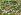"""""""Le poulailler de la Commune"""". Peinture paysanne chinoise. Commune Populaire de Hou-Hsien (Shaanxi). Années 1960-70. © Roger-Viollet"""