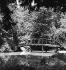 Le jardin de la maison natale de Giuseppe Verdi (1813-1901), compositeur italien. Busseto (Italie). © Fedele Toscani / Alinari / Roger-Viollet