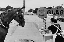The coach driver's horse and the ice cream vendor. Paris, place de la Concorde, 1960. © Jean Mounicq / Roger-Viollet