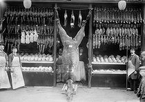 Camel on display at the entrance a game and poultry shop. Paris, 1908. © Maurice-Louis Branger/Roger-Viollet