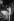 Johnny Hallyday (1943-2017), acteur et chanteur français, 1979. © Noa / Roger-Viollet