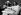 John Lennon et sa femme Yoko Ono de retour d'Amsterdam, à leur arrivée à l'aéroport d'Heathrow. Ils tiennent un petit gland qu'ils projettent d'envoyer à chacun des dirigeants mondiaux pour qu'ils les plantent pour la paix. Londres, 1er avril 1969. © TopFoto / Roger-Viollet