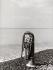 Trombone posé sur une plage de galets. Italie, vers 1960. © Vincenzo Balocchi/Alinari/Roger-Viollet