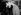 """Laurence Olivier (1907-1989), acteur et réalisateur anglais et sa femme Vivien Leigh (1913-1967), actrice anglaise disant au revoir à Marilyn Monroe (1926-1962) qui retourne aux Etats-Unis après le tournage de """"Le prince et la danseuse"""". Angleterre. © PA Archive / Roger-Viollet"""