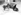 Chiens esquimaux ayant participé à une expédition de Paul-Emile Victor. © Roger-Viollet