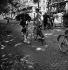 Guerre 1939-1945. Libération de Paris. Agent de police à bicyclette arborant des drapeaux français et américain. 25 août 1944. © Pierre Jahan/Roger-Viollet