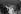 Cab Calloway (1907-1994), chanteur, comédien et chef d'orchestre de jazz américain, en concert.     © Jacques Cuinières / Roger-Viollet