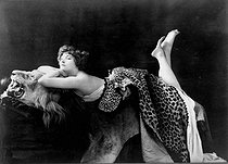 Colette (1873-1954), French writer, posing on a lion skin and covered with panther skin, 1909. © Roger-Viollet