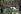 Participants au festival de Woodstock. Bethel (Etats-Unis), août 1969.  © Shelly Rusten / The Image Works / Roger-Viollet