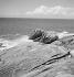 Marine landscape. Brittany, circa 1935. © Gaston Paris / Roger-Viollet