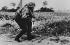World War II. Front of Normandy, June 1944. German photographer. © LAPI/Roger-Viollet
