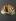 Eventail plié ballon publicitaire,  champagne Irroy, Reims, vers 1925. Feuille : papier imprimé ; monture : bois; Rivure : métal. Paris, musée Galliera. © Stéphane Piera/Galliera/Roger-Viollet