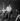Johnny Hallyday (1943-2017), acteur et chanteur français. Paris, Olympia, septembre 1961. © Studio Lipnitzki/Roger-Viollet