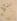 Eugène Lambert. Branche de rosier et oiseau, dédicacé à George Sand, 1851. Paris, musée de la Vie romantique.     © Musée de la Vie Romantique/Roger-Viollet
