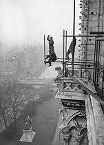Laying on a scaffolding on Notre-Dame de Paris Cathedral. Paris, February 1952. © Collection Roger-Viollet / Roger-Viollet