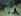 Berthe Morisot (1841-1895). In the park. Pastel, circa 1874. Musée des Beaux-Arts de la Ville de Paris, Petit Palais © Petit Palais/Roger-Viollet