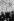 Juifs priant devant le mur des Lamentations. Jérusalem (Palestine, Israël), vers 1900. © Léon et Lévy / Roger-Viollet