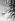 Tulipes. © Roger-Viollet
