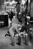 Lobb's shoe shop on Saint James Street. London (England), 1959. © Jean Mounicq/Roger-Viollet