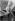 Raoul Dufy (1877-1953), peintre français, dans son atelier. © Laure Albin Guillot / Roger-Viollet