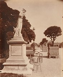Jardin des Tuileries, 1907. Photographie d'Eugène Atget (1857-1927). Paris, musée Carnavalet. © Eugène Atget / Musée Carnavalet / Roger-Viollet