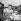 Jacques Anquetil (1934-1987), coureur cycliste français, vainqueur du Tour de France 1962, avec le Belge Joseph Planckaert, second. Paris, parc des Princes. © Roger-Viollet