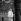 Cassius Clay (Mohamed Ali, 1942-2016), boxeur américain s'entraînant dans le parc de Hyde Park. Londres (Angleterre), 28 mai 1963. © PA Archive / Roger-Viollet