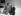 Joe DiMaggio (1914-1999), sportif américain, et son épouse Marilyn Monroe (1926-1962), actrice américaine. Etats-Unis, 1954.  © Underwood Archives / The Image Works / Roger-Viollet