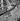 Guerre 1939-1945. Libération de Paris. Barricade, rue de Rennes. Paris (VIème arr.), 25 août 1944. © Pierre Jahan/Roger-Viollet