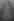 Evénements de mai-juin 1968. Manifestation gaulliste sur les Champs-Elysées. Paris (VIIIe arr.), 30 mai 1968. Photographie de Jacques Boissay. Fonds France-Soir. Bibliothèque historique de la Ville de Paris. © Jacques Boissay / Fonds France-Soir / BHVP / Roger-Viollet