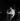 Johnny Hallyday (1943-2017), acteur et chanteur français. Paris, Olympia, septembre 1961. © Studio Lipnitzki / Roger-Viollet