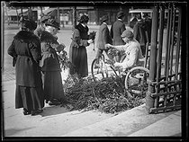 "Man selling branches in front of the Madeleine church. Paris (VIIIth arrondissement), on March 28, 1920. Photograph from the collections of the newspaper ""Excelsior"". © Excelsior – L'Equipe / Roger-Viollet"