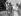 La reine Elisabeth II (née en 1926), son époux le prince Philip (né en 1921), et deux de leurs enfants, le prince Charles (né en 1948) et la princesse Anne (née en 1950), dans les jardins de Clarence House. Londres (Angleterre), 9 août 1951. © PA Archive / Roger-Viollet