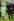 Le prince Philip (né en 1921), prince consort du Royaume-Uni et époux de la reine Elisabeth II, accompagnant sa belle-mère, la Reine mère Elisabeth Bowes-Lyon (1900-2002), lors du Derby Vodaphone. Epsom (Angleterre), 10 juin 2000. Photo : Stefan Rousseau. © Stefan Rousseau / PA Archive / Roger-Viollet
