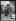 """excelsior. Élégantes à l'hippodrome d'Auteuil lors du Prix des Drags. Vendredi 24 juin 1921. Photographie du journal """"Excelsior"""". 19210624. © Excelsior – L'Equipe / Roger-Viollet"""