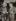 Ilya Ehrenbourg (1891-1967), écrivain et journaliste soviétique, et Albert Einstein (1879-1955), physicien américain d'origine allemande, à l'université de Princeton (Etats-Unis). Photo : Collection privée. © TopFoto / Roger-Viollet