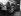 Cercueils dans une pépinière pendant une épidémie de grippe à Berlin (Allemagne), janvier 1970. © Ullstein Bild / Roger-Viollet