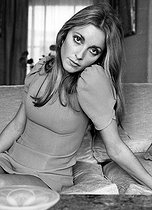 Sharon Tate (1943-1969), American actress, wife of Roman Polanski (born in 1933), Franco-Polish actor and film director, assassinated in Los Angeles. 1968. Photograph from André Perlstein (born in 1942). © André Perlstein / Roger-Viollet