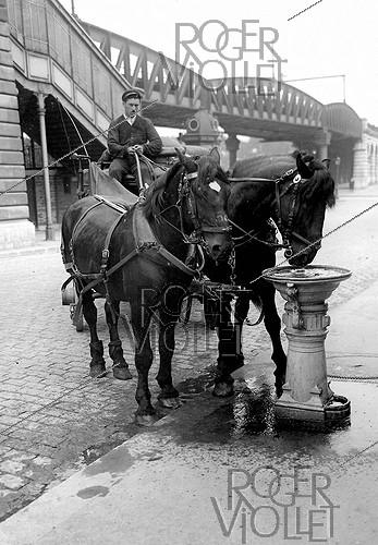 Roger-Viollet | 657649 | Drinking trough for horses. Paris, around 1900. | © Albert Harlingue / Roger-Viollet