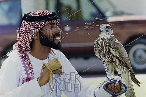 Roger-Viollet | 197533 | Falconer freshening his bird of prey. United Arab Emirates, 1990. | © Françoise Demulder / Roger-Viollet