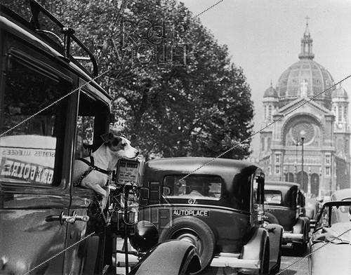 Roger-Viollet | 343754 | G7 taxi station. A small dog and Renault Viva 4 cars on the boulevard Malesherbes, near the Saint-Augustin church. Paris (VIIIth arrondissement), 1950. Photograph by Janine Niepce (1921-2007). | © Janine Niepce / Roger-Viollet