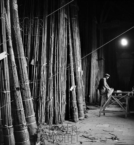 Roger-Viollet | 180299 | Stock of bamboos at the Etablissements Pezon et Michel, manufacture for fishing rods. Amboise (Indre-et-Loire), circa 1945. | © Tony Burnand / Roger-Viollet